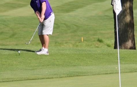 Golfers finish 16th at invitational