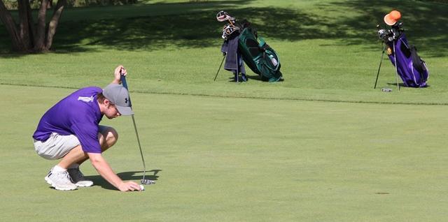 Golf takes sixth at regionals
