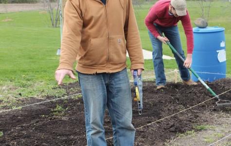 IVSustainability summer garden project underway
