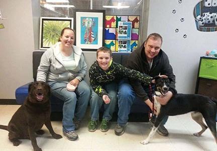 Local animal shelter serves many