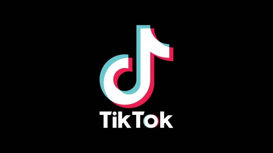 TikTok creates a platform for aspiring artists